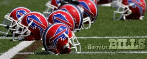Buffalo Bills Helmet Cover Photo