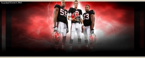 Atlanta Falcons  Cover for Facebook